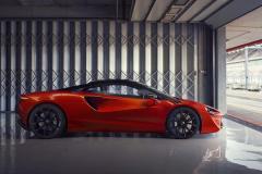 12895-McLarenArtura